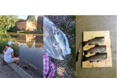 Vissen Edersee Sauerland Duitsland